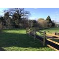 Outdoor space at Cranham Primary School, Worcester