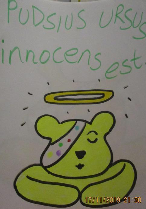 Pudsey Bear is innocent.