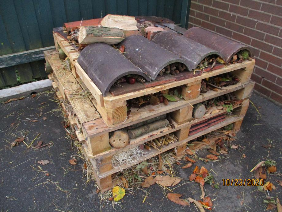 We also have 5 new bird boxes and a log pile.