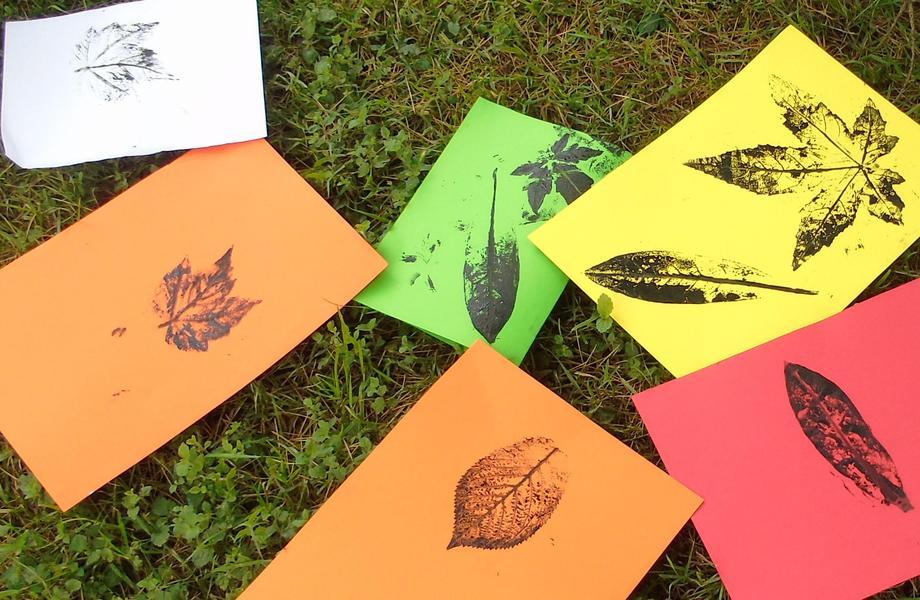 Leaf printing.