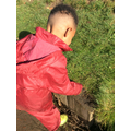 Forest School - making faces