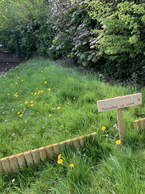 Long grass area beginning to take shape!April 2020