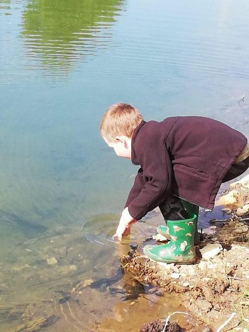 Daniel looking for tadpoles