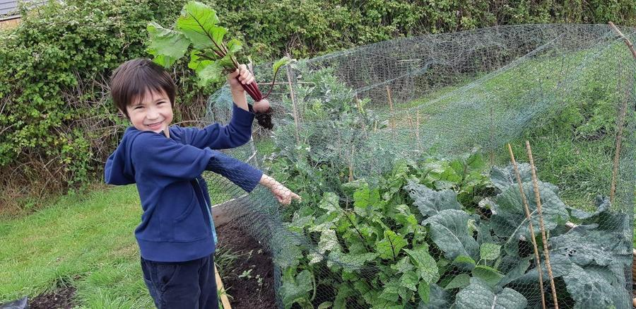 William has been to the allotment- look what he has grown!