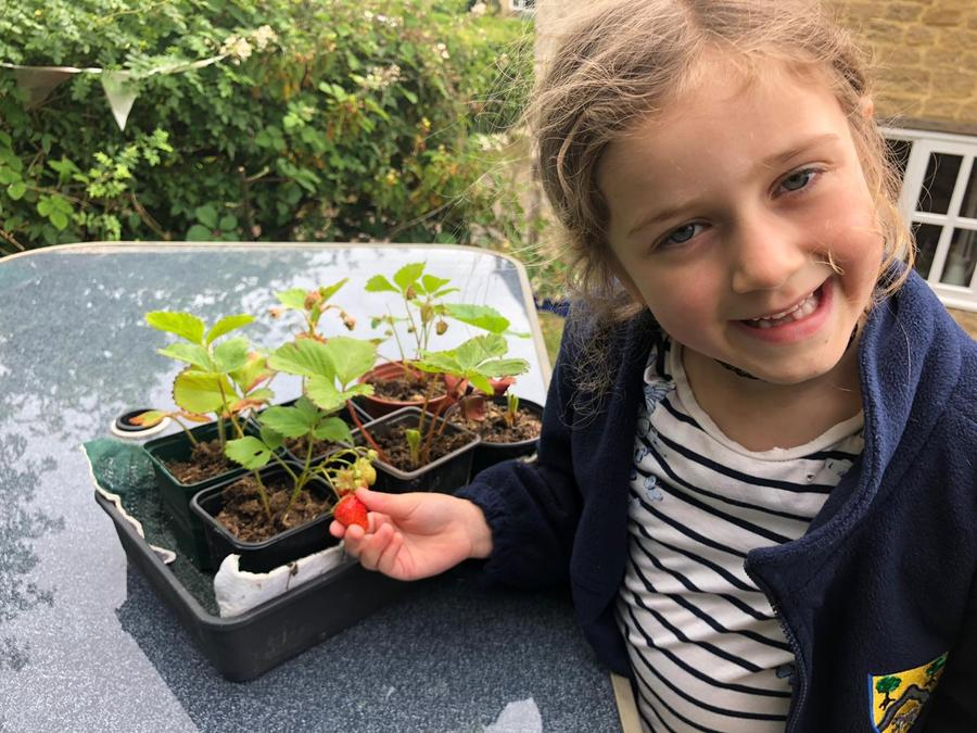 Brooke is growing her own fruit and veg