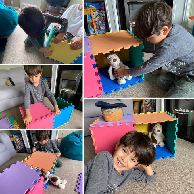 Ezra's Dog Habitat
