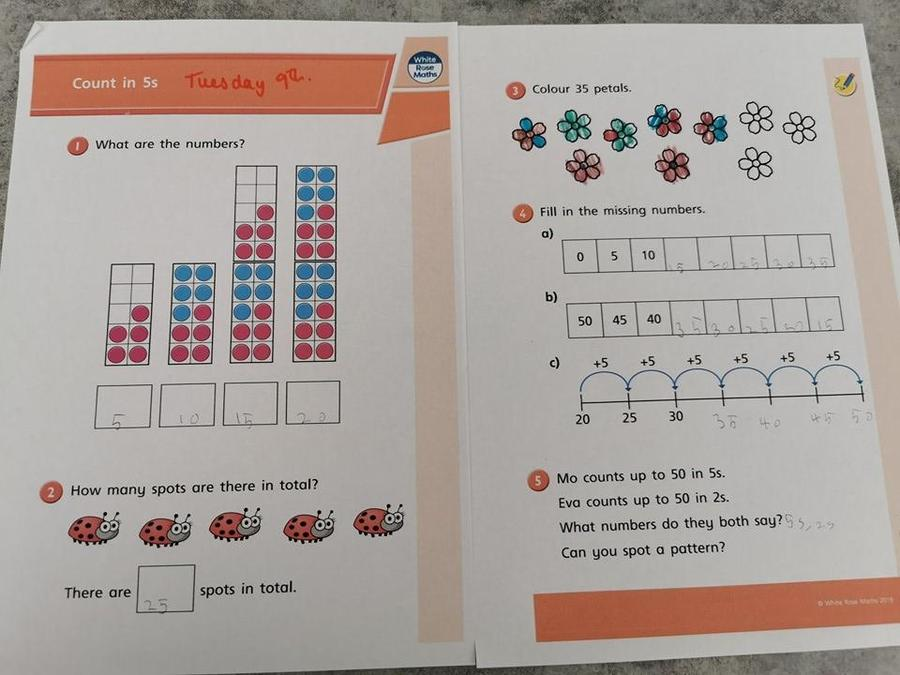 Poppy has done counting in 5s too!
