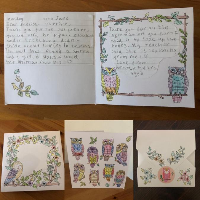 A lovely thank you card for the owl pellets.