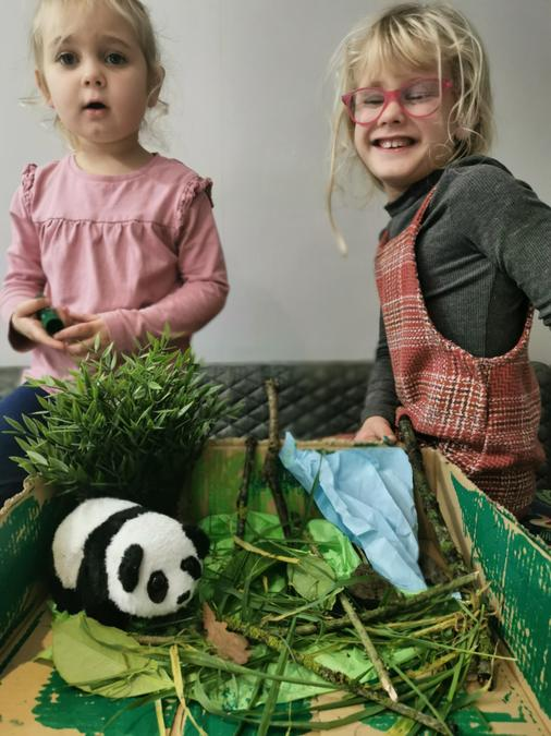 Belle and Pixie's Panda Habitat