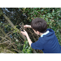 Exploring photography in our environment