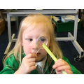 The children will learn how to observe and record their findings