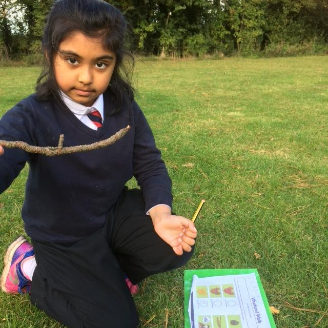 We founds lots of natural objects on our nature walk.