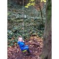 Having fun on the tree swing