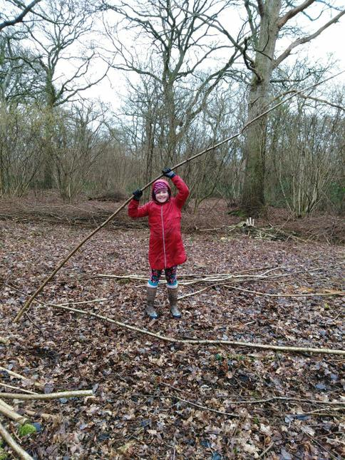 Sorting the Hazel branches.