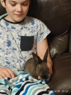 A new bunny!