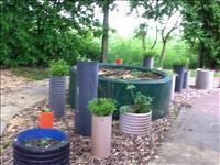 Our herb garden.