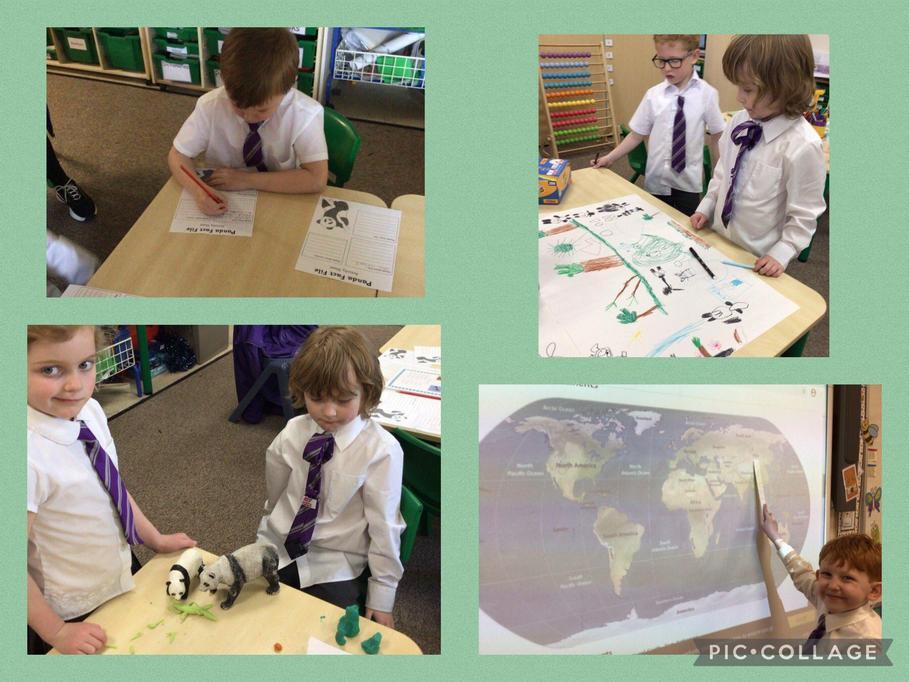 Pandas and looking at continents.