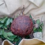 Elm class found a large brown egg.