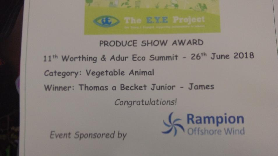 Photo of certificate for most creative vegetable animal
