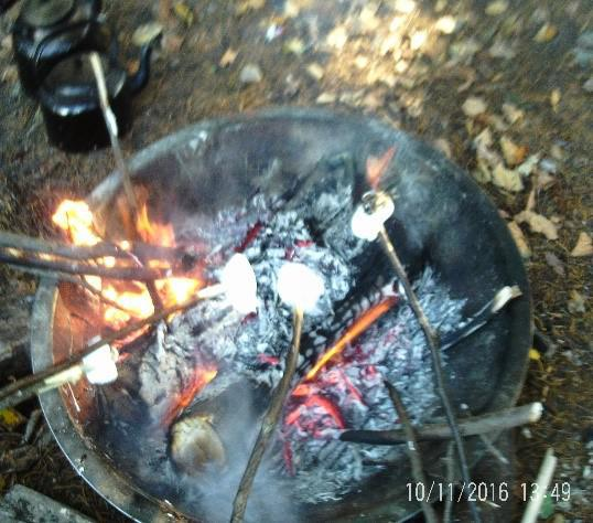 Photo of toasting marshmallows on a firepit