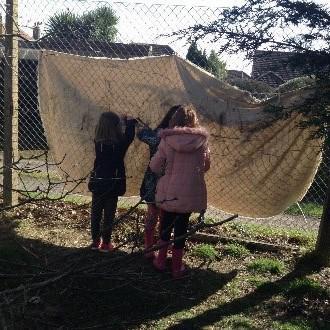 Photo of pupils making dens