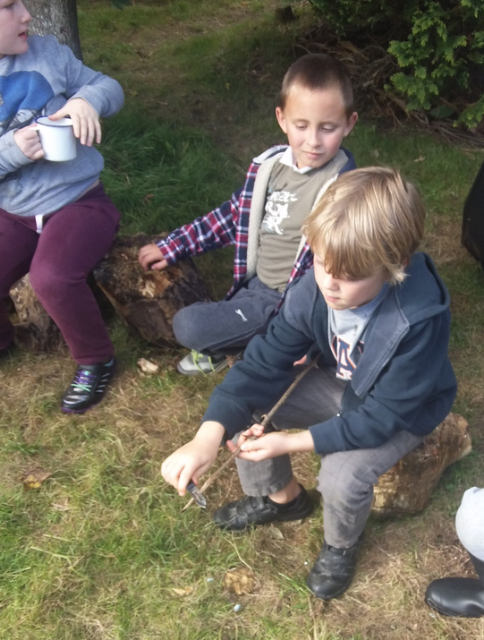 Photo pf pupils around the forest school area