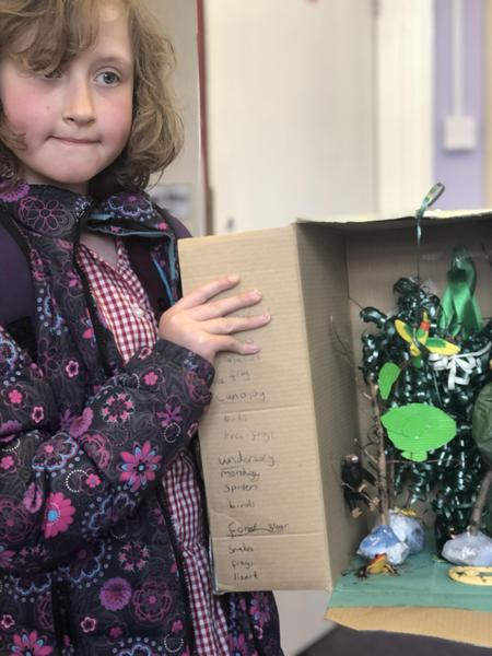 Rainforest diorama from Lily-Rose