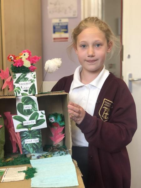 Esme and her Rainforest project