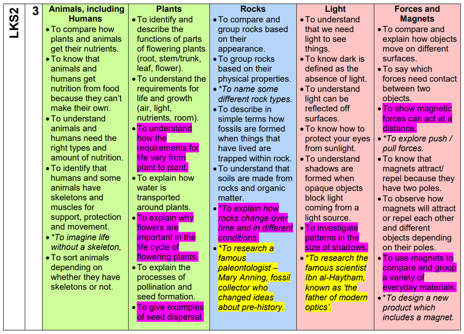 An example taken from the LKS2 Science Curriculum Coverage Document