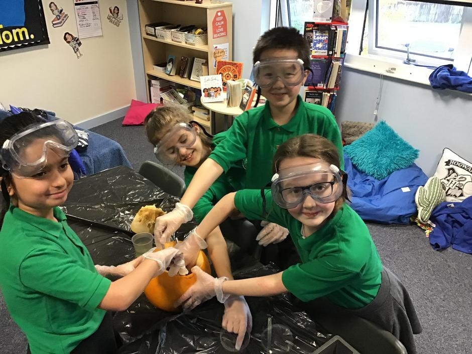 Spooky Science! Investigating microbes in Year 6