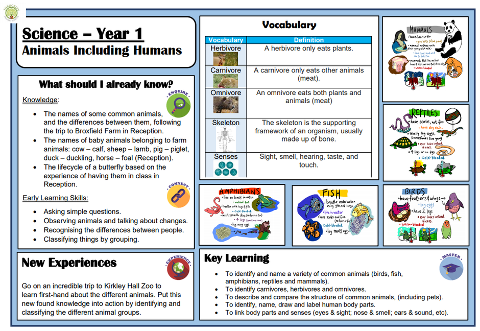 An example taken from our KS1 Science Knowledge Organisers