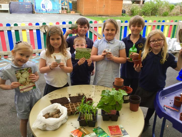 Class 1 Seed Planting April 2019