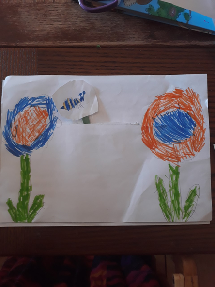 Matilda's super moving picture to show pollination