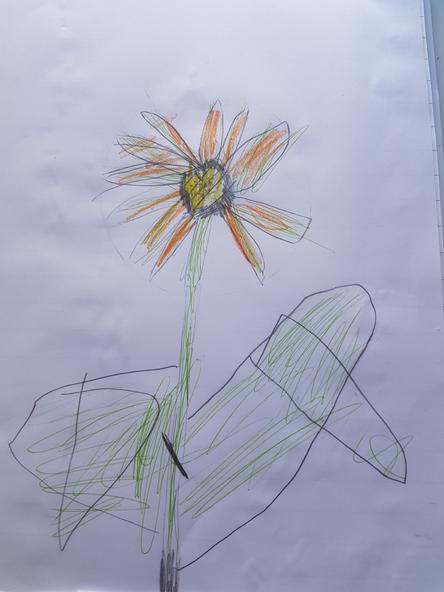 A lovely sunflower by Samuel.