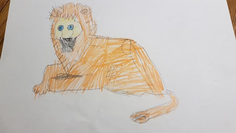 A great lion picture by Samuel.