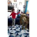 Watch out there's a lion!