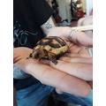 Matilda's new pet!