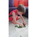 Blake making some leaf art