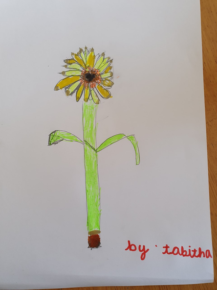 A super sunflower picture.