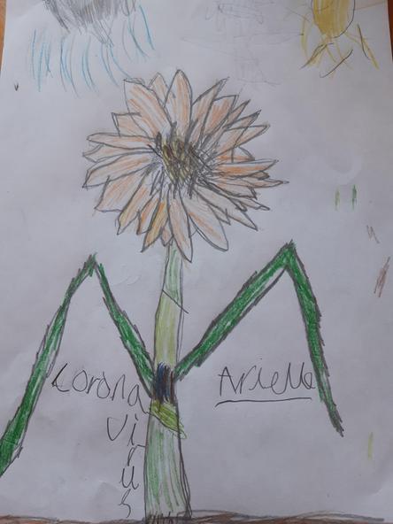 A beuatiful sunflower!