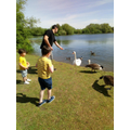 Joshua and his family feeding the ducks and geese