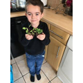 Kyan and the plants he's grown
