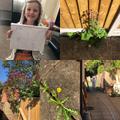 Olivia's amazing plant work