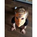 Henry's super tiger mask