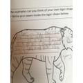 Jimmy's finished tiger poem