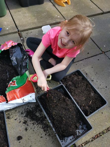 Busy gardening!
