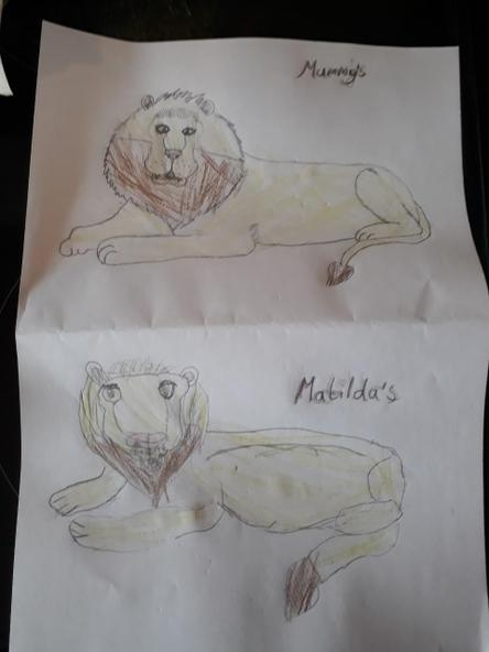 Super lions! By Matilda and her mummy.