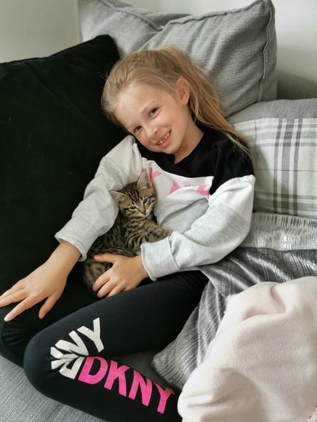 A new pet kitten , lovely!