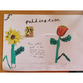 Tabitha's great pollination moving picture.