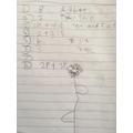 Erin's fabulous maths